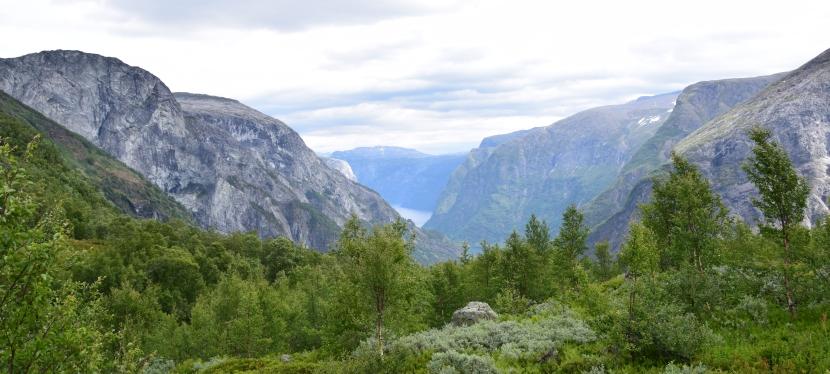Die schönsten Wanderungen inNorwegen