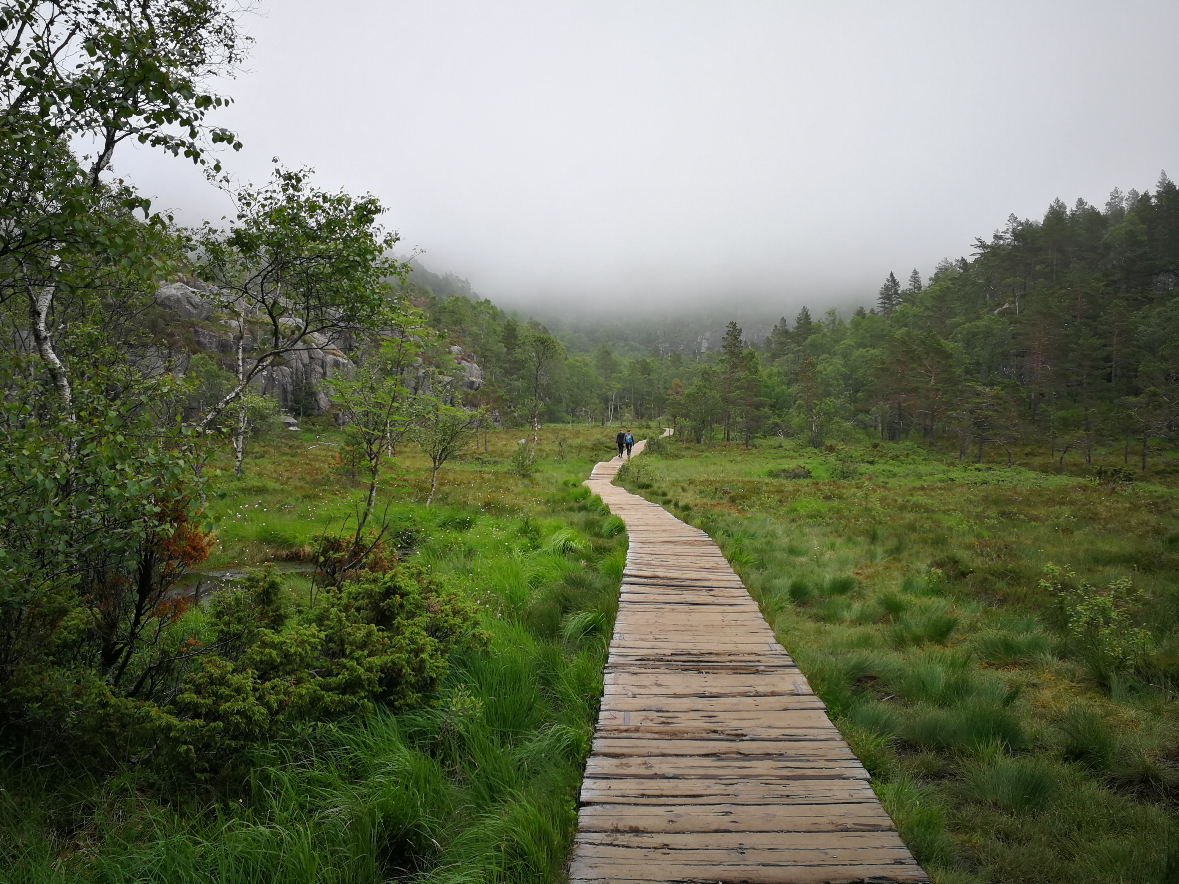 Wanderung zum Preikestolen - Holzsteig