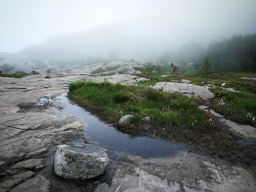 Landschaft auf dem Weg zum Preikestolen