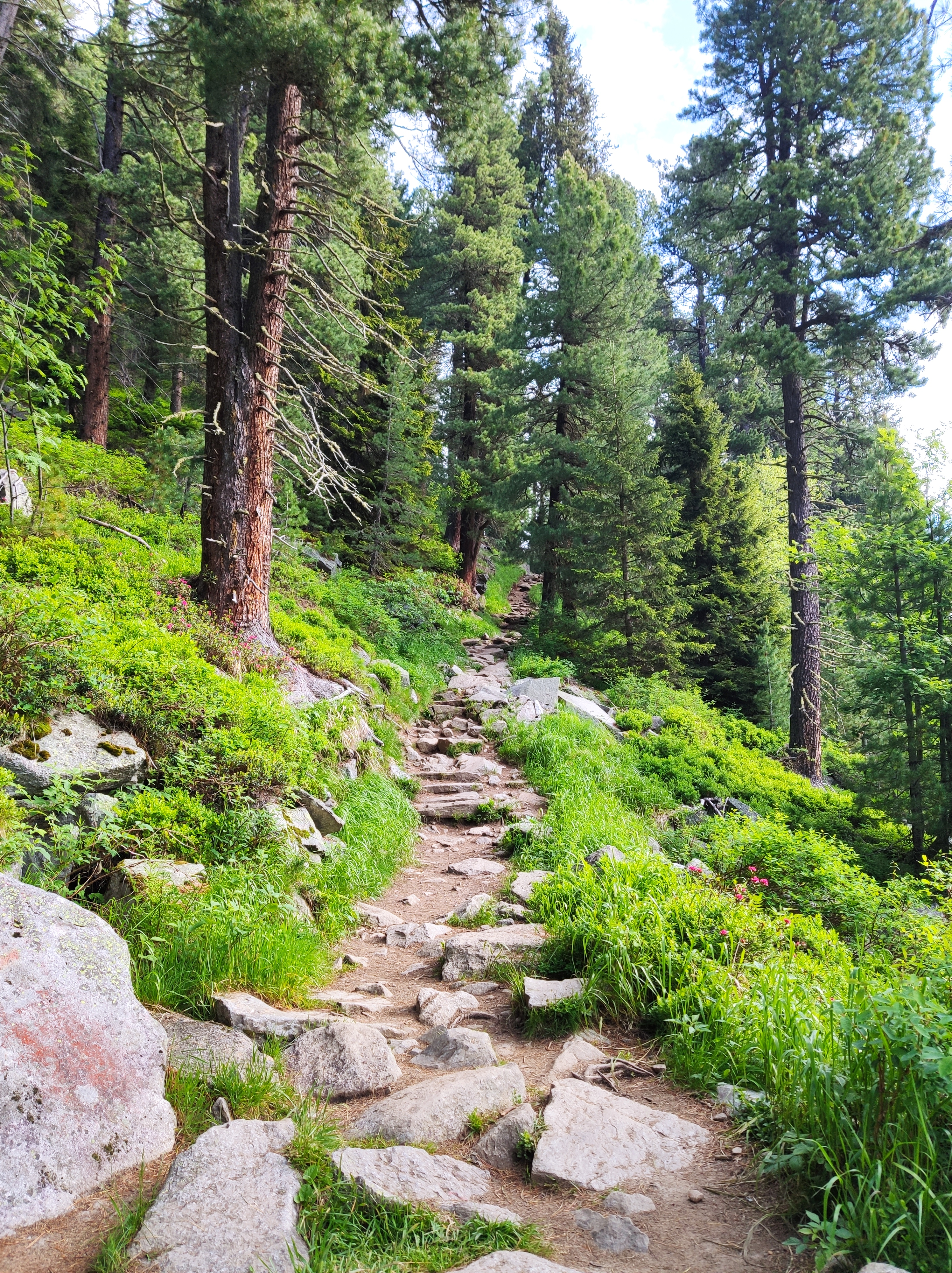Aufstieg zur Olpererhütte