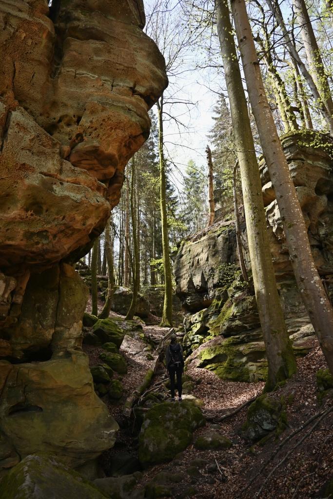 Die Teufelsschlucht in der Eifel