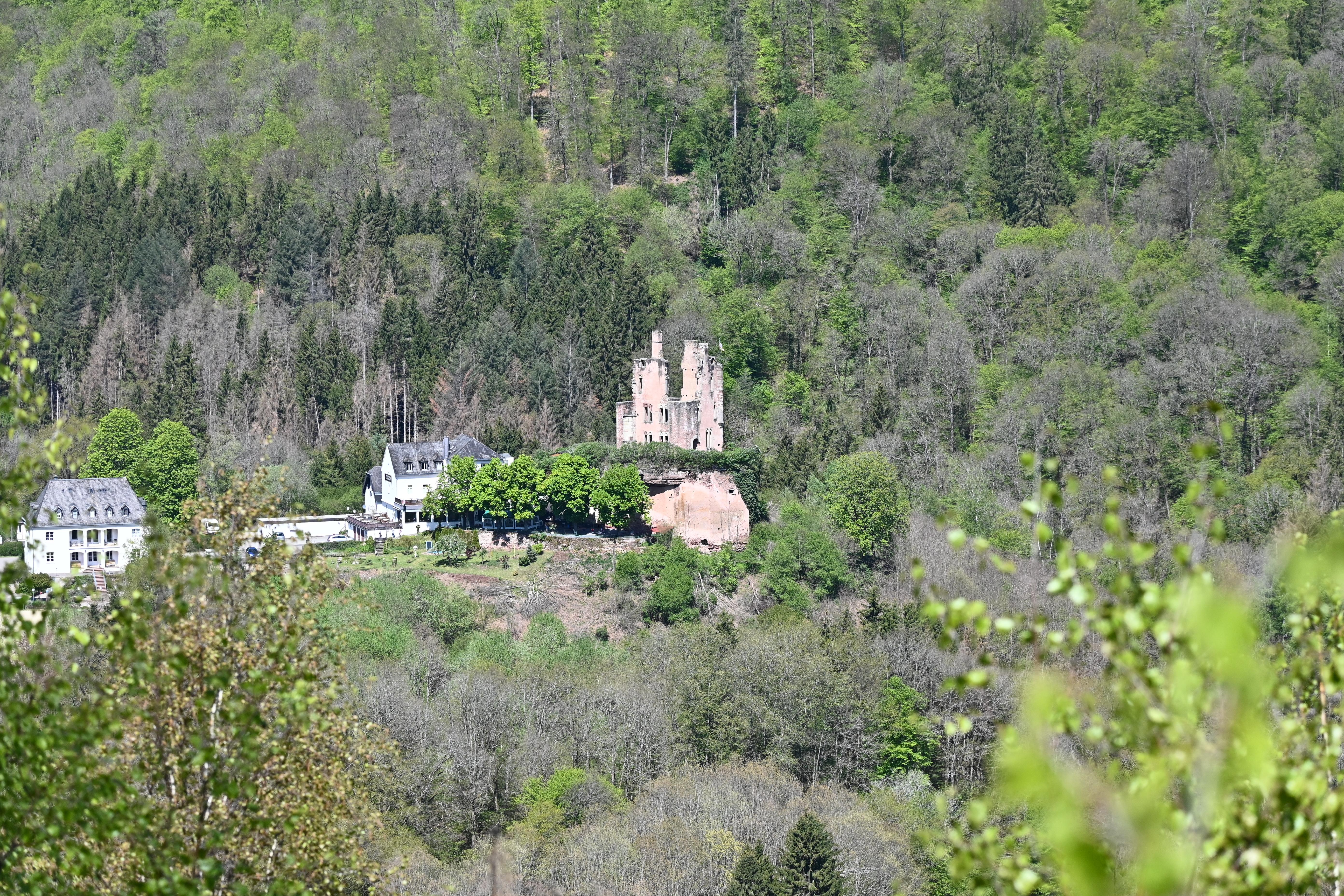 Burg Ramstein - Eifel