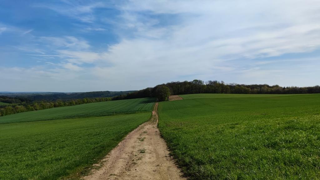 Premiumwanderweg Römerpfad
